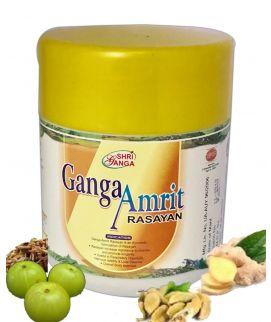 Ganga Amritrasayan